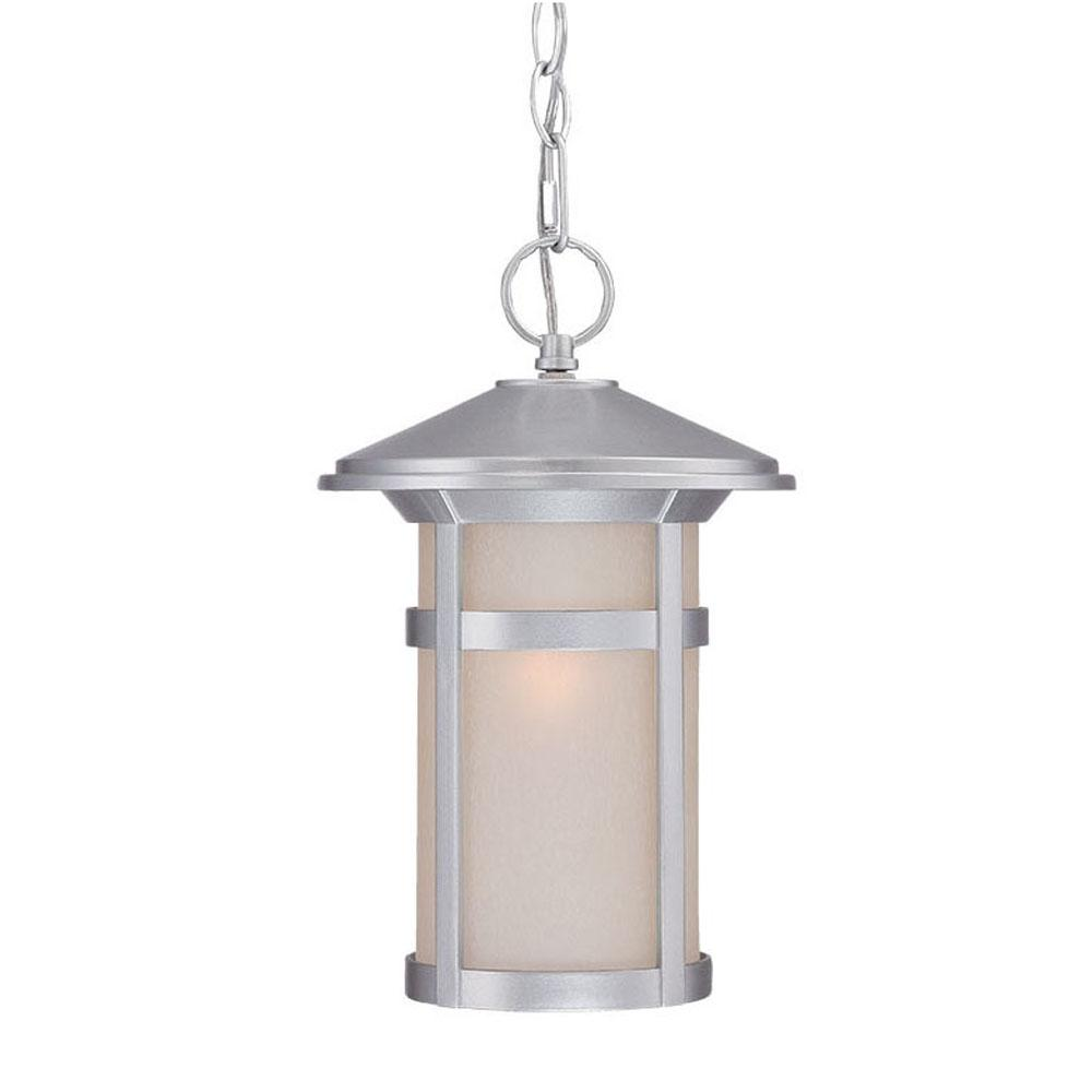 Phoenix Collection Hanging Lantern 1-Light Outdoor Brushed Silver Light Fixture