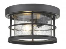Z-Lite 555F-BK - 1 Light Outdoor
